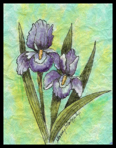 Sandy Laipply Iris with Green